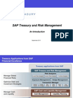 89 Introduction to SAP Transaction Manager