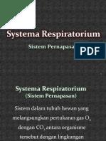 Syst Respiratorium UIN
