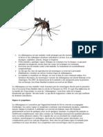 Le Chikungunya