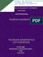 Técnicas diagnósticas de Leptospirosis