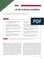 manejo integral del sd metabolico