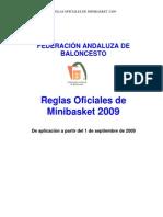 reglamentomini2009-borrador
