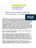 FILA BRASILEIRO CARACTERISTICAS