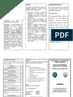 Brochure Mae Audi y Seg Inf UASD PP 27082013 (3)