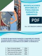 CAMBIOS ANATOMO FISIOLOGICOS