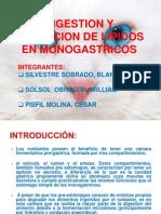 Digestion y Absorcion de Lipidos en Monogastricos Blanka