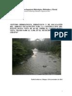 Informe Puente Escaloncito