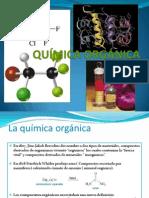 Clase 1 Organica 2013