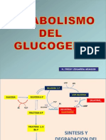 Fat Biosintesis de Lipidos