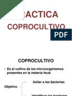 4. Practica Coprocultivo 2