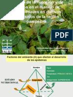 CARMONA - Impacto de la nutrición y el uso de fosfitos en el manejo de enfermedades