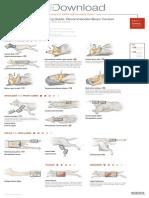 Radiographic Positioning Dog
