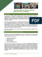 38_eurepgap_04_03_esp (1).pdf