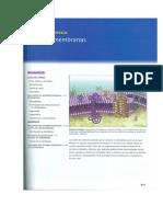 McKee y McKee 2003-Lipidos(1)