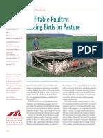 Profitable Poultry (6)