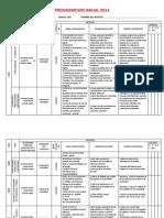 PLAN ANUAL PCR -2013.docx