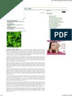 Pengertian Mikroba Patogen - Fusarium Sp
