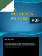 Nutricion en Animales