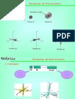 HIBRIDACIONES