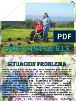 PCE Cistocele