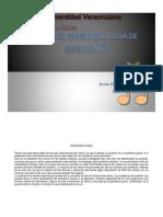M2A_KevinGonzaga-EducaciónMusical.pdf