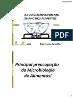 Aula - Controle Do Desenvolvimento Microbiano Nos Alimentos