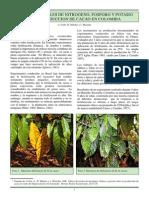 19 Fertilizacion Del Cacao