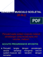 k23 - Sistem Musculo Sceletal