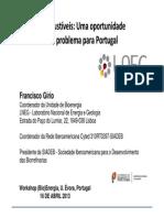 Biocombustíveis - Uma oportunidade ou um problema para Portugal - PALESTRA_EVORA_16_ABRIL_2013