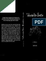 "Cover für ""SB III - Dunedin"" (2013)"