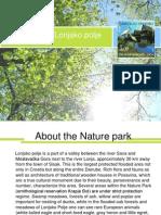 Park of Nature Lonjsko Polje - Protected Species