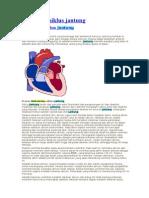 Mekanisme siklus jantung