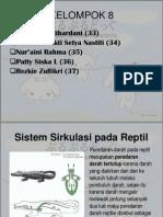 Sistem Sirkulasi pada Reptil