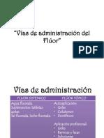 Seminario Vias Del Fluor