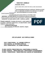 Materie clasa XI-a biologie structurata