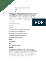 Erva-de-santa maria - Chenopodium ambrosioides -  Ervas e Frutas Comestíveis do Bioma Mata Atlântica – Ficha Completa Ilustrada