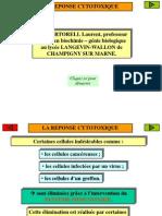 cytotoxicite