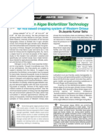 Blue Green Algae Bio Fertilizer Technology