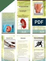 renal failure pamphlet