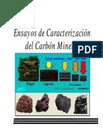 Ensayos Para La Caracterizacion Del Carbon