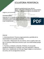 FALLA CIRCULATORIA PERIFERICA y ICCDI presen.pptx