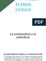 Estudios Culturales 017
