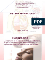 Sist Respiratorio 090718132709 Phpapp02