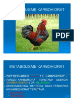 METABOLISME KH-10 [Compatibility Mode]
