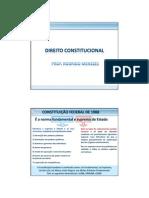 Direito Constitucional Rodrigo Menezes