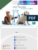 protocolos_vacunales