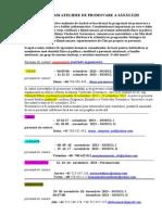 Program Andrei 2014