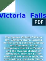 FW Victoria Falls Org.