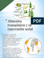Alimentos transgénicos y su repercusión social