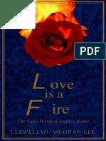Llewellyn Vaughan-Lee - Love is a Fire
